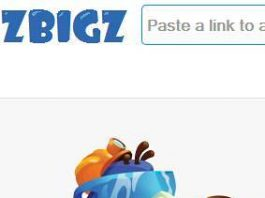 zbigz download torrent with idm photos